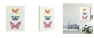 "Trademark Global Courtney Prahl Butterfly Charts III Canvas Art - 15"" x 20"""