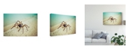"Trademark Global Pixie Pics Arachnid Blue Canvas Art - 20"" x 25"""