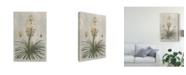 """Trademark Global Pancrace Bessa Ua Ch Tropical Varieties III Canvas Art - 37"""" x 49"""""""