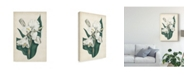 "Trademark Global Curtis Ivory Garden IV Canvas Art - 20"" x 25"""