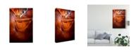 "Trademark Global David Drost Sun Shining Through Canyon V Canvas Art - 37"" x 49"""