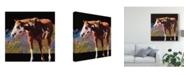 "Trademark Global Julie T. Chapman Color Square I Canvas Art - 27"" x 33"""