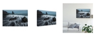 "Trademark Global Danny Head Water Ribbons Canvas Art - 15"" x 20"""