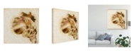 "Trademark Global Ryan Hartson-Weddle Inspektor I Canvas Art - 15"" x 20"""