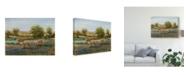 "Trademark Global Tim Otoole Field of Cattle II Canvas Art - 15"" x 20"""
