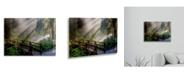 "Trademark Global Pierre Leclerc Forest Sunlight Floating Brushed Aluminum Art - 22"" x 25"""