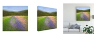 "Trademark Global Sheila Finch Flowers of Half Moon Bay I Canvas Art - 15"" x 20"""