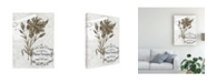 "Trademark Global Melissa Wang Ua Ch Petite Beaute IV Canvas Art - 15"" x 20"""