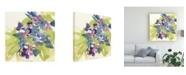 """Trademark Global Chris Paschke Cool Spring Bouquet 1 Canvas Art - 20"""" x 25"""""""