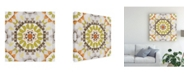 "Trademark Global June Erica Vess Driftwood Mandala III Canvas Art - 15"" x 20"""