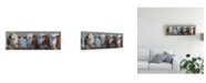 "Trademark Global Carolyne Hawley Little Bull and the Babes Canvas Art - 15"" x 20"""