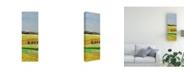 "Trademark Global Mehmet Altug Pastel Hills II Canvas Art - 15"" x 20"""