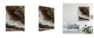 """Trademark Global John Butler Mineral Spirit V Canvas Art - 15"""" x 20"""""""