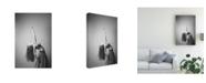 "Trademark Global Simone Conti Martina Canvas Art - 20"" x 25"""