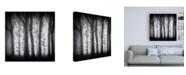 """Trademark Global Jacqueline van Bijnen Birds Canvas Art - 19.5"""" x 26"""""""