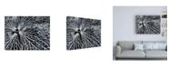 """Trademark Global Design Fabrikken Winterspell Fabrikken Canvas Art - 27"""" x 33.5"""""""