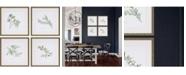 """Paragon Herbs Framed Wall Art Set of 4, 17"""" x 17"""""""