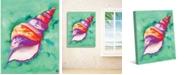 "Creative Gallery Colorful Sea Snail Shell 20"" x 16"" Canvas Wall Art Print"