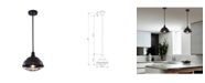 """Home Accessories Cynthia 11"""" 1-Light Indoor Pendant Light with Light Kit"""