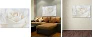 "Trademark Global Cora Niele 'Pure White Rose' Canvas Art - 32"" x 22"" x 2"""