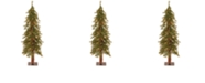 National Tree Company National Tree 4' Hickory Cedar Tree with 100 Clear Lights
