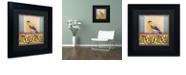 """Trademark Global Rachel Paxton 'Small Bird 216' Matted Framed Art, 11"""" x 11"""""""