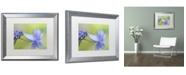 "Trademark Global Cora Niele 'Blue Hydrangea' Matted Framed Art - 20"" x 16"" x 0.5"""
