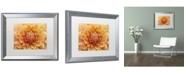 "Trademark Global Cora Niele 'Orange Dahlia' Matted Framed Art - 20"" x 16"" x 0.5"""