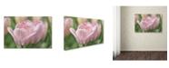 "Trademark Global Cora Niele 'Pink Tulip Baronesse' Canvas Art - 24"" x 16"" x 2"""