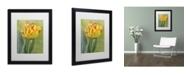 "Trademark Global Cora Niele 'Rembrandt Tulip' Matted Framed Art - 16"" x 20"" x 0.5"""