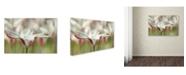 "Trademark Global Cora Niele 'Tulipa Clusiana Cashmeriana' Canvas Art - 47"" x 30"" x 2"""