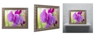"""Trademark Global Cora Niele 'Two Sweet Pea Flowers' Ornate Framed Art - 20"""" x 16"""" x 0.5"""""""