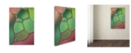 """Trademark Global Cora Niele 'Stained Glass V' Canvas Art - 24"""" x 16"""" x 2"""""""