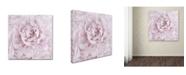"Trademark Global Cora Niele 'Pink Peony Flower' Canvas Art - 14"" x 14"" x 2"""