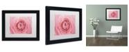 """Trademark Global Cora Niele 'Pink Persian Buttercup Flower' Matted Framed Art - 11"""" x 14"""" x 0.5"""""""