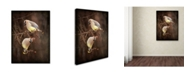 "Trademark Global Jai Johnson 'Peek A Boo Cedar Waxwings' Canvas Art - 24"" x 18"" x 2"""