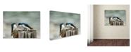 "Trademark Global Jai Johnson 'Angry Swallows' Canvas Art - 47"" x 35"" x 2"""