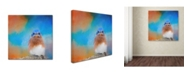 "Trademark Global Jai Johnson 'Blue Is Beautiful' Canvas Art - 35"" x 35"" x 2"""