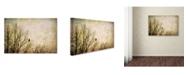 "Trademark Global Jai Johnson 'Greeting The Sun' Canvas Art - 19"" x 12"" x 2"""