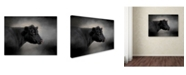 "Trademark Global Jai Johnson 'Portrait Of The Black Angus' Canvas Art - 47"" x 35"" x 2"""