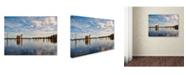 "Trademark Global Jai Johnson 'Autumn Cypress Trees' Canvas Art - 24"" x 18"" x 2"""