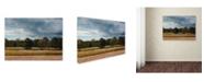 "Trademark Global Jai Johnson 'Behind Natures Fence' Canvas Art - 47"" x 35"" x 2"""