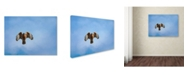 "Trademark Global Jai Johnson 'Raptors Warning' Canvas Art - 19"" x 14"" x 2"""