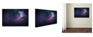 "Trademark Global Jai Johnson 'Iris Whisper' Canvas Art - 47"" x 30"" x 2"""