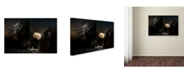 "Trademark Global Jai Johnson 'Fresh Catch' Canvas Art - 24"" x 16"" x 2"""