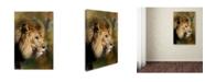 "Trademark Global Jai Johnson 'Spring Lion 2' Canvas Art - 24"" x 16"" x 2"""