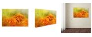 "Trademark Global Jai Johnson 'Fresh Autumn Flowers' Canvas Art - 19"" x 12"" x 2"""