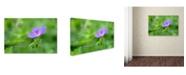 "Trademark Global Cora Niele 'Blossoming Soul' Canvas Art - 24"" x 16"" x 2"""