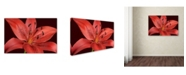 "Trademark Global Cora Niele 'Red Lily' Canvas Art - 24"" x 16"" x 2"""