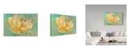 "Trademark Global Cora Niele 'La Belle Fleur I' Canvas Art - 47"" x 30"" x 2"""